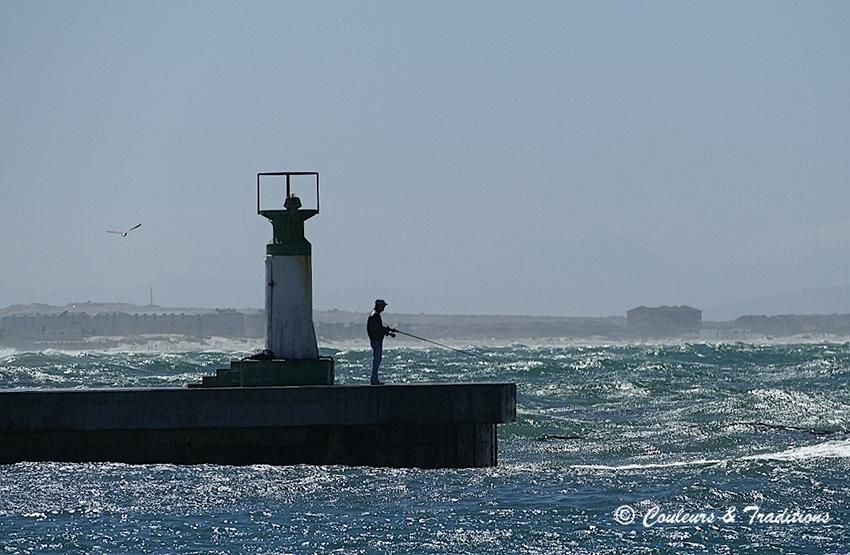 Le port de Kalk Bay