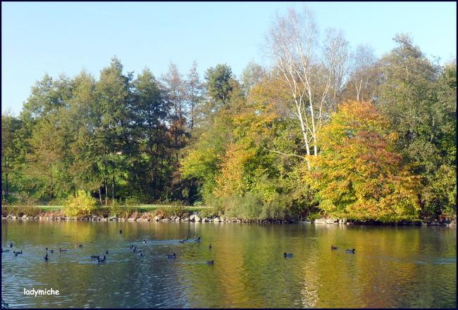Promenade en automne .