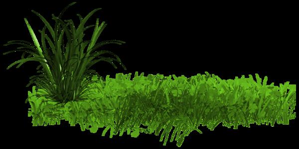 """Résultat de recherche d'images pour """"barre de séparation végétation"""""""
