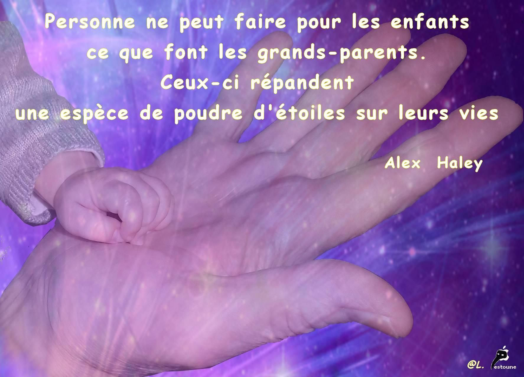 L Amour De Nos Petits Enfants Citation D Alex Haley Le