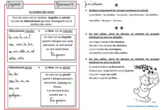 leçons et exercices de grammaire et conjugaison ce2
