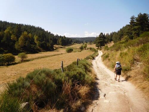 St Alban sur Limagne / Aumont Aubrac  14km