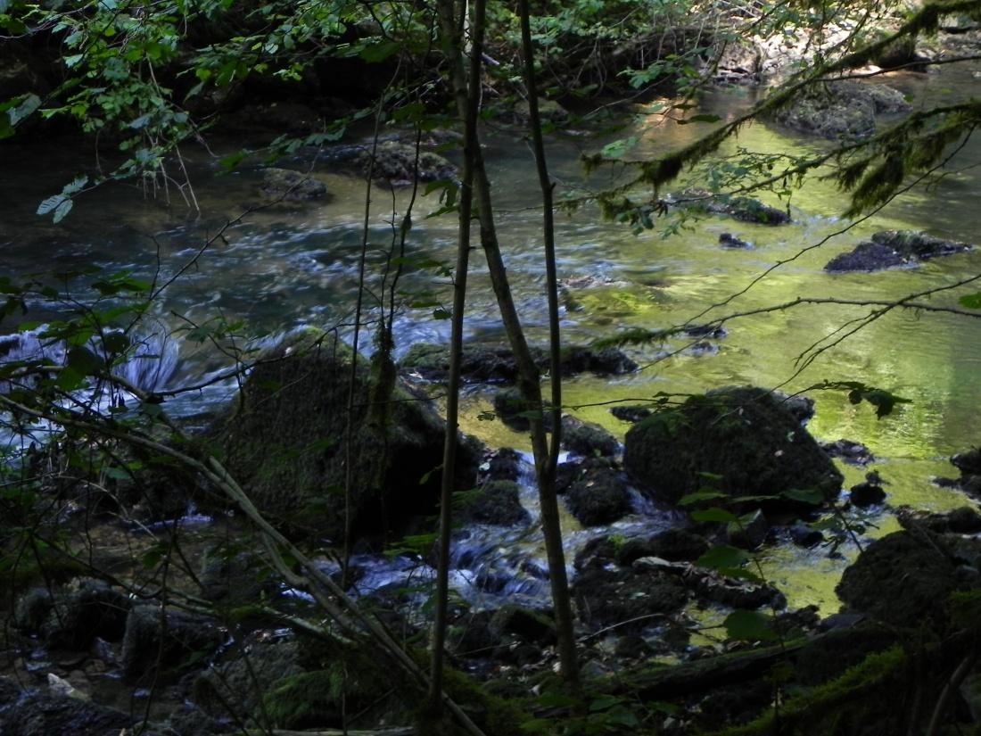 La rivière d'or , le Lison dans le Doubs