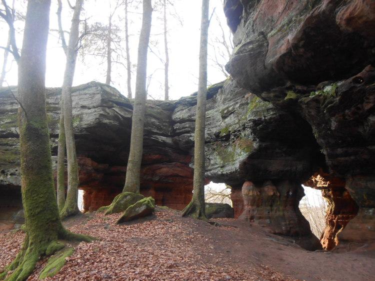Vosges du nord/Palatinat-le pays des rochers fantastiques