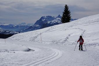 Balade panoramique au Mont Chéry  - Les Gets