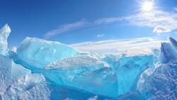 Arcticus (compo)