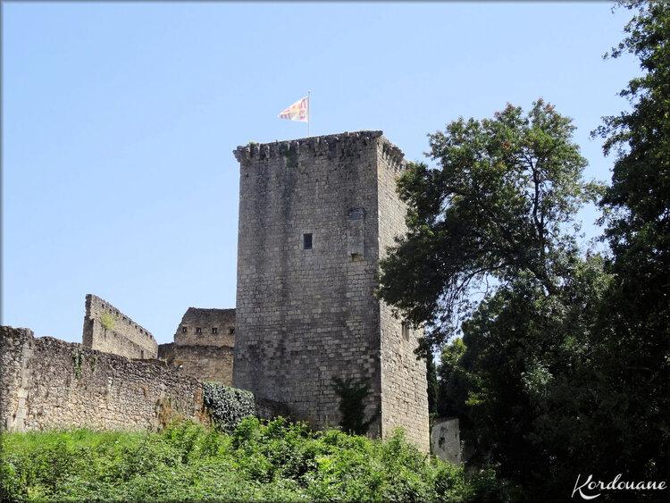 Photo de la Citadelle médiévale de Rions - Gironde