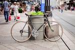 vélo sur un trottoir (crédit : pixabay.com)