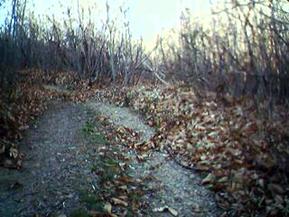 Chemin d'Arles 2008 - Saint Gervais sur Mare (26km)