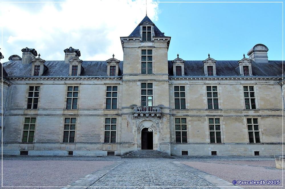 Château de Cadillac - 1/9