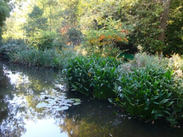 Giverny, le jardin d'eau