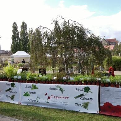 Les Journées des Plantes de la Maladrerie à Beauvais...