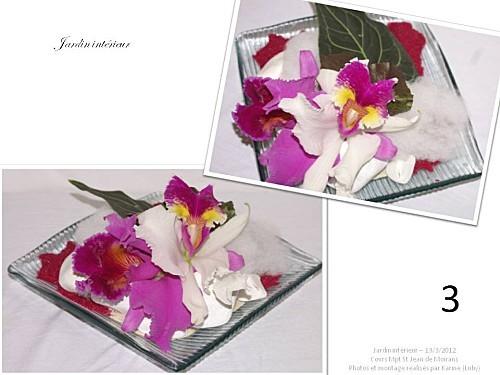 2012 03 13 jardin interieur floriscola (6)
