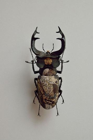 Le scarabée est un porte bonheur ...