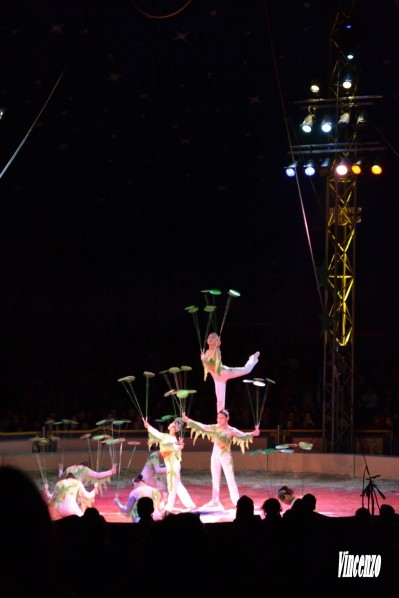 Cirque assiettes chinoises 2