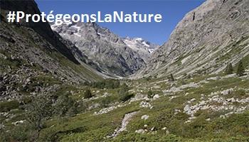 Pétition : 56 personnalités se mobilisent pour demander une vraie protection de la nature - Vous aussi soutenez cet appel !