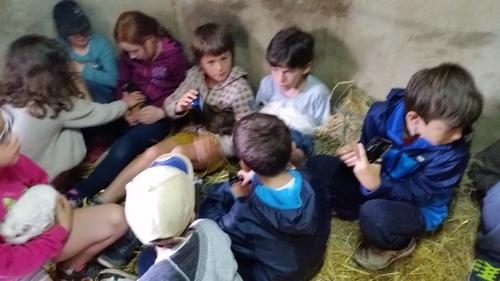 Voyage de fin d'année : Ferme pédagogique du Domaine de la Ganne