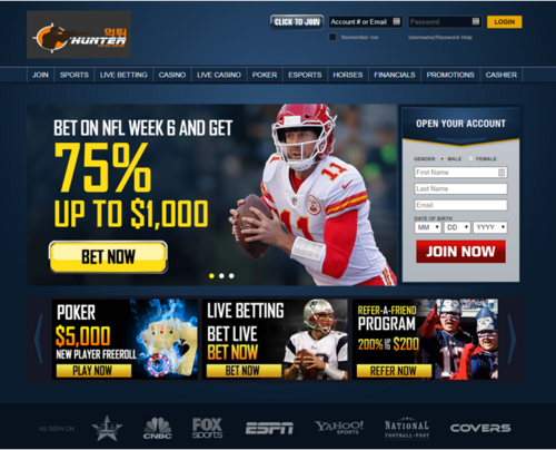 Online Sports Betting Sites - Within Reach of Many Thanks to the Internet