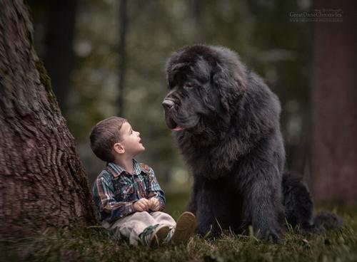 La petite et son fidèle compagnon