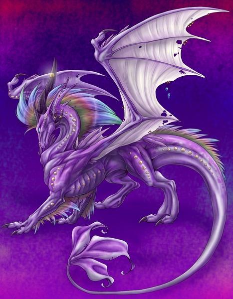Dragons animés