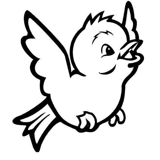 Dessins d 39 oiseaux - Dessin d oiseau ...