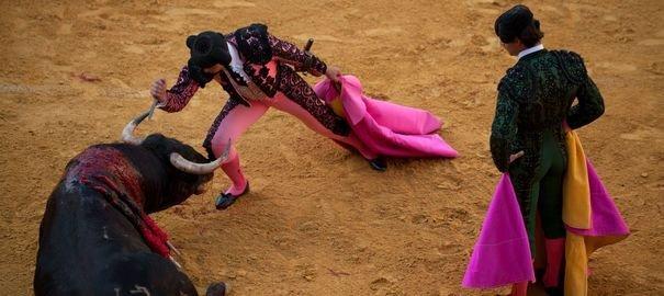 Espagne: grande manifestation pour l'abolition de la tauromachie