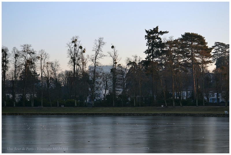 Rambouillet : Un soir d'hiver
