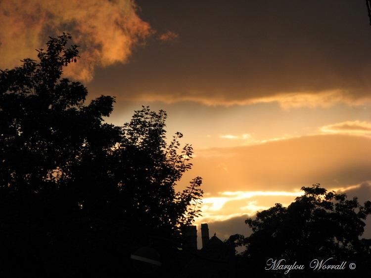Ciel d'Alsace 378
