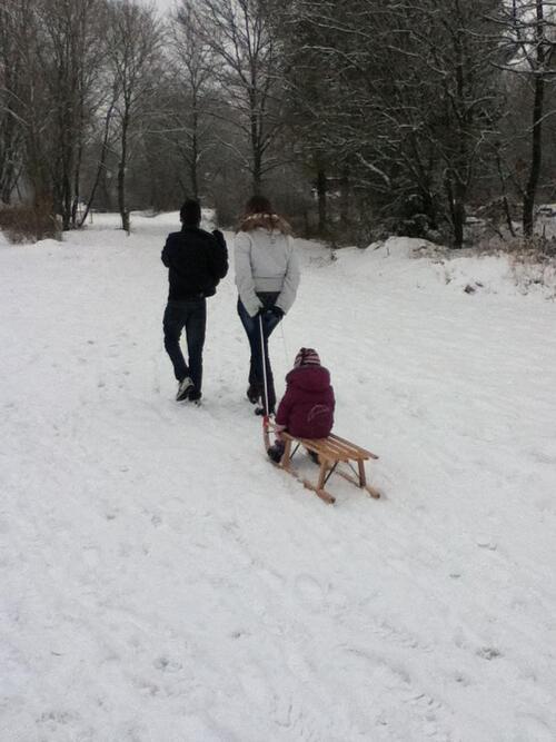 - Janvier sous la neige