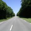 ligne droite dans les Vosges