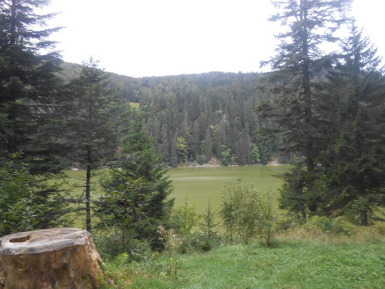 Vosges- vers le Hirschteine