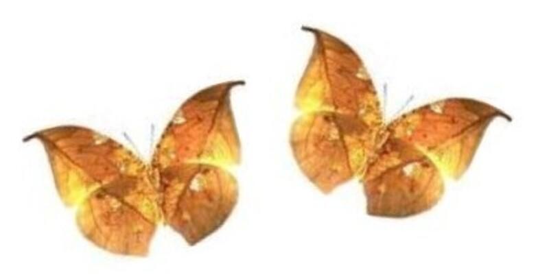 Sur les feuilles d'automne (poésie de L. Codet)