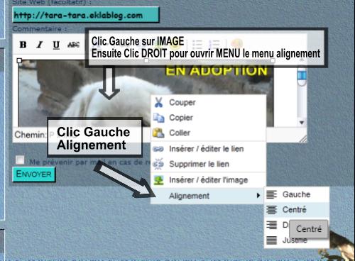 Mettre un image sur un blog ou dans un post