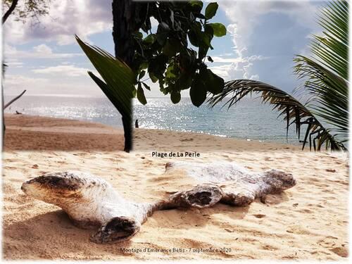 La plage de La Perle