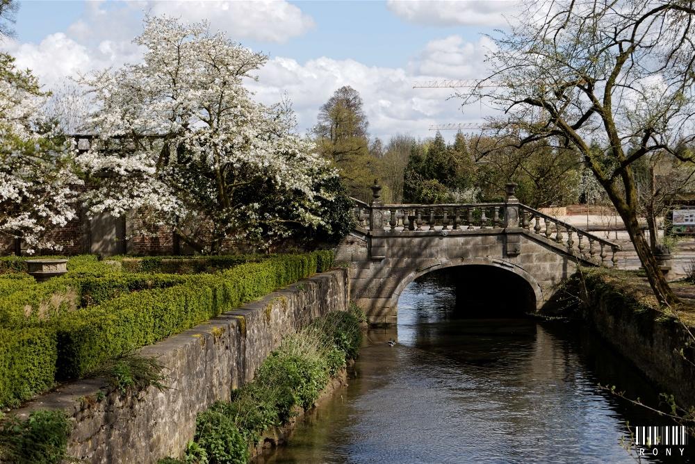 Le vieux pont au printemps