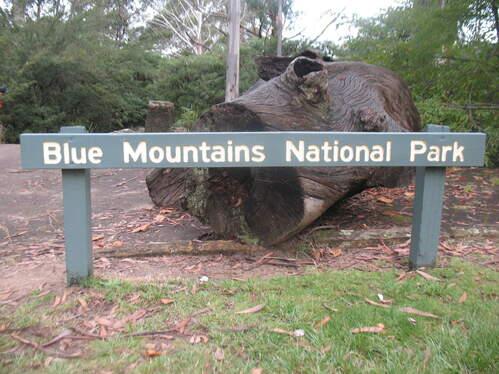 Blue-Mountains-304.jpg