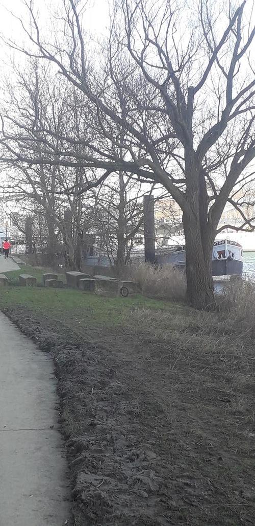 Randonnée,course à pied,janvier 2020