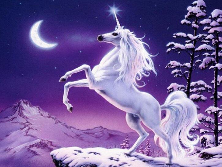 Zoologie:  Science décalée : la licorne existe, nous l'avons rencontrée