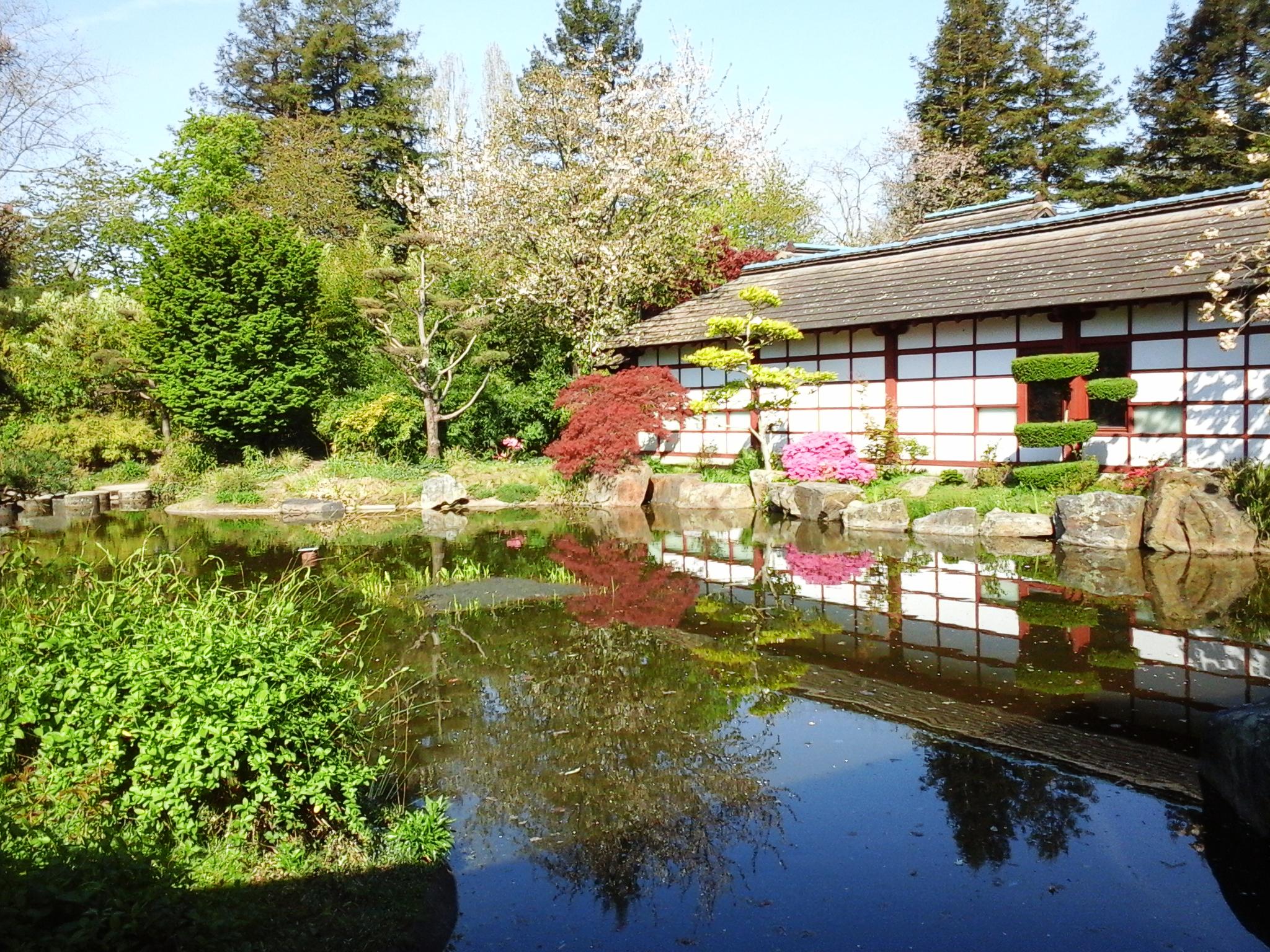 Jardin Japonais A L Ile Versailles De Nantes 2 Oceanique
