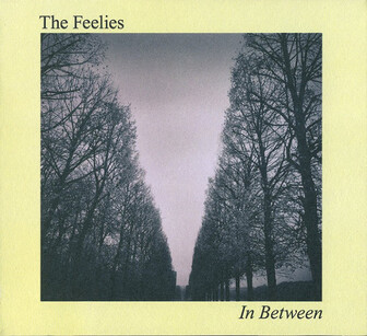 Feelies so good! Jour 6