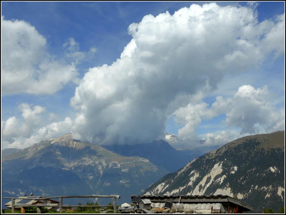 Suite du séjour en Haute-Maurienne, en août dernier...L'alpage de Montbas..N°1