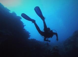 Plongée à Nouméa
