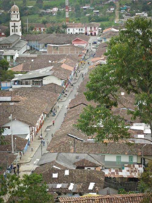 Colombie, région des cafés
