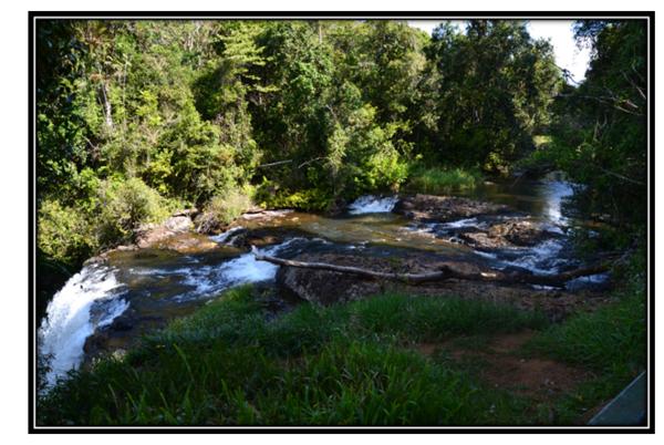 Millaa Millaa et Water Falls Circuit