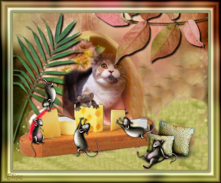 Une vie de souris