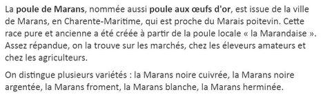 ** EN REVENANT de MARANS > vers >>> la VENDEE**