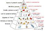 """L'alimentation avec """"les fondamentaux"""""""