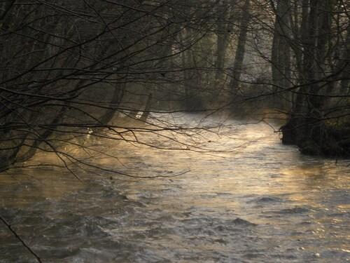 L'Aisne au petit matin