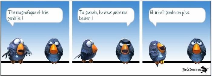 Les Zozios .... 18)