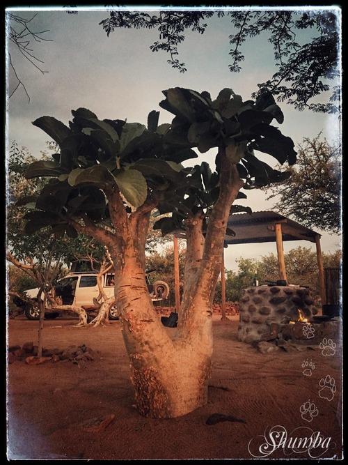 Erongo Plateau Camp